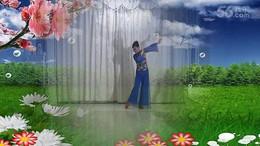 丽雨广场舞《好一朵女人花》编舞艺子龙 正背面演示