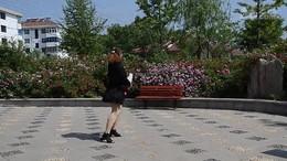 小霞广场舞《万水千山总是情》原创扇子舞 正背面演示