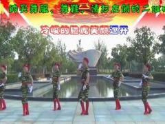 楠楠舞蹈《当兵就是那么帅》原创舞蹈 附正背面口令分解教学演示