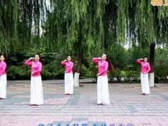 云裳馨悅廣場舞《新疆玫瑰》編舞沚水 附正背面口令分解教學演示