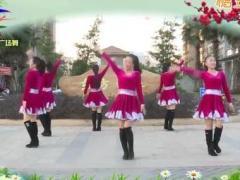 杨丽萍广场舞《阿表DJ》原创民族舞 附正背面口令分解教学演示