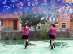 蝶依廣場舞《哥哥妹妹》原創雙人舞 附正背面口令分解教學演示