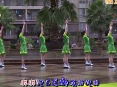 杨丽萍广场舞《需要你陪》原创初级入门广场舞 附正背面口令分解教学演示
