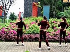 漓江飞舞广场舞《雪莲花》原创舞蹈 附正背面口令分解教学演示