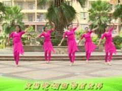 杨丽萍广场舞《你走进了我心房》原创舞蹈 附正背面口令分解教学演示