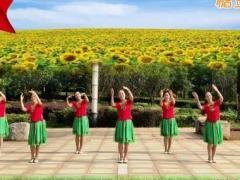 江西鄱陽春英廣場舞《我和我的祖國》原創舞蹈 附正背面口令分解教學演示
