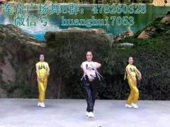 蘭州蓮花廣場舞《風情萬種》原創舞蹈 附正背面口令分解教學演示