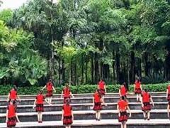 漓江飞舞广场舞《花落花有情》原创舞蹈 附正背面口令分解教学演示
