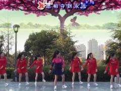 茉莉广场舞《若有缘再相见》原创现代舞 正背面口令分解动作教学演示