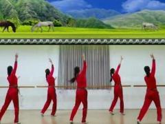 刘荣广场舞《火火的姑娘》原创舞蹈 正背面口令分解动作教学演示