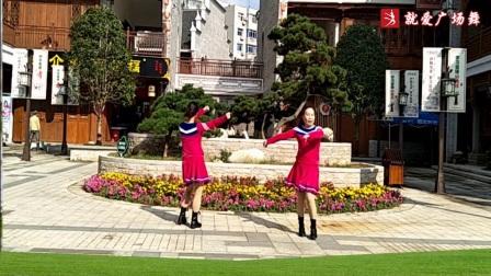 醉恋海鸥广场舞《尽情的摇摆》原创现代舞 附口令分解动作教学演示