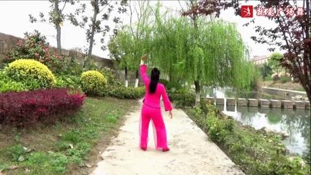 謝春燕廣場舞古典《女兒情》抒情優美舞蹈附正背面口令分解教學演示