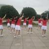琴藝舞苑廣場舞
