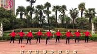 美久舞蹈《红姑娘》正背面口令分解动作教学演示