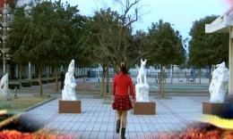 肥矿集团青馨明月广场舞《五星红旗飘起来》编舞春英 个人版