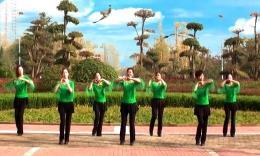 舞動中原馨蕾廣場舞隊《我愛廣場舞》團隊演示 正面教學分解
