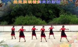 婷婷飛舞廣場舞《我愛廣場舞》原創舞蹈 團隊演示