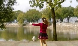湖北黄石千丝万柔广场舞《小菊花》编舞陈敏 动感欢快的舞蹈