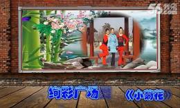 绚彩广场舞《小菊花》编舞春天 团队演示 附正背面分解教学