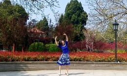 精灵宝贝广场舞《老家的月亮》编舞格格 正背面演示