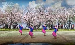 晴晴明珠广场舞《丫山迷歌》编舞応子 团队正背面演示