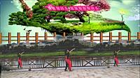 孝子公园健身团队《一路惊喜》原创健身舞 正背面演示
