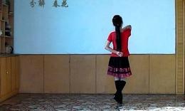 春花舞蹈《闯码头》原创口令分解教学及背面演示