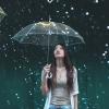 雨中的旋律
