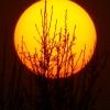 雪山升起了红太阳