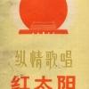 中国红太阳