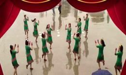 雅玲广场舞《小薇你在何方》